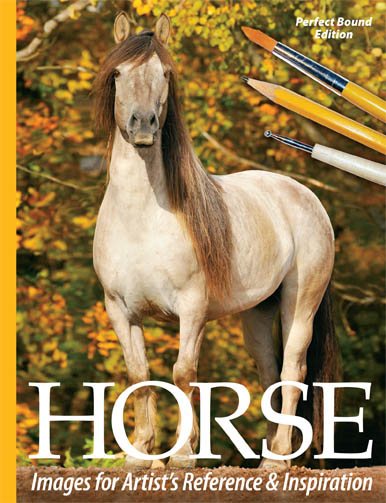 Horse Images for Artist's Reference and Inspiration a book of horse photos