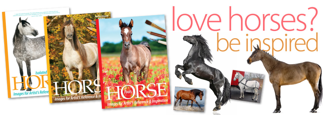Horse Images Series for Artists: Horse pictures for reference and inspitation (model horse sculpting / customizing reference book