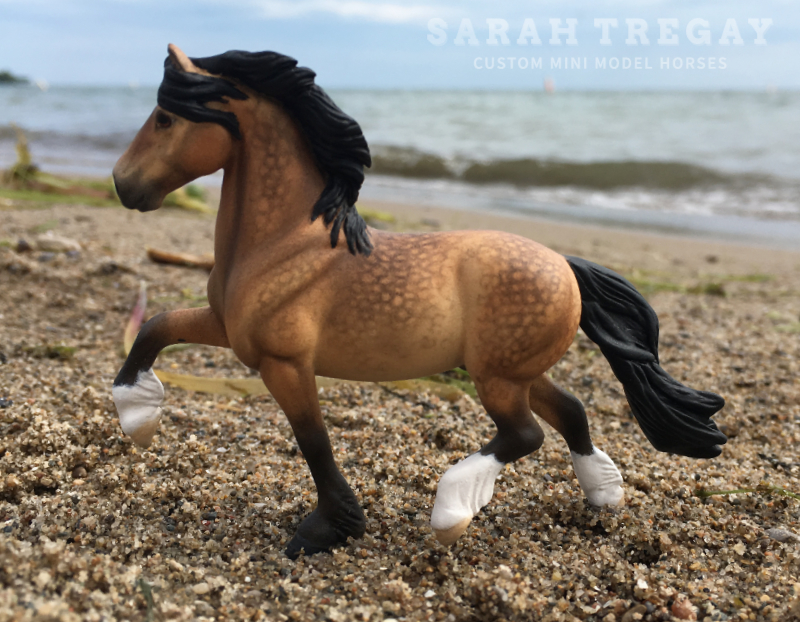 Dapple Buckskin Welsh Section D Cob Stallion Pony Custom Mini Model Horse by Sarah Tregay