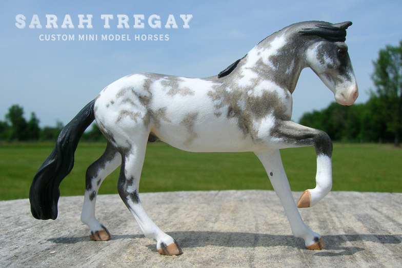 Criollo Custom Mini Model Horse by Sarah Tregay