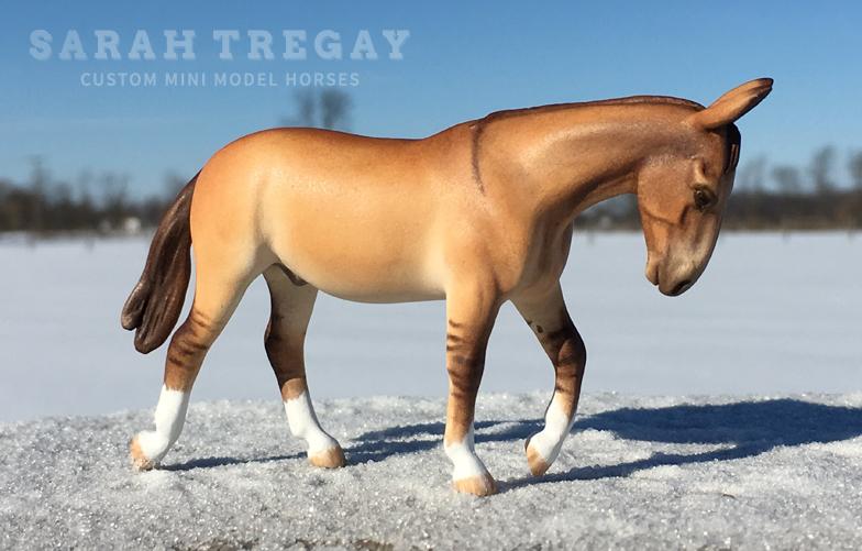 Sarah Tregay, Custom Mini Mode...